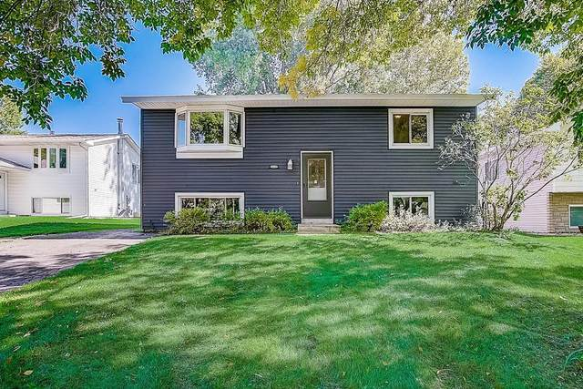 10431 Palm Street NW, Coon Rapids, MN 55433 (#6105648) :: The Michael Kaslow Team