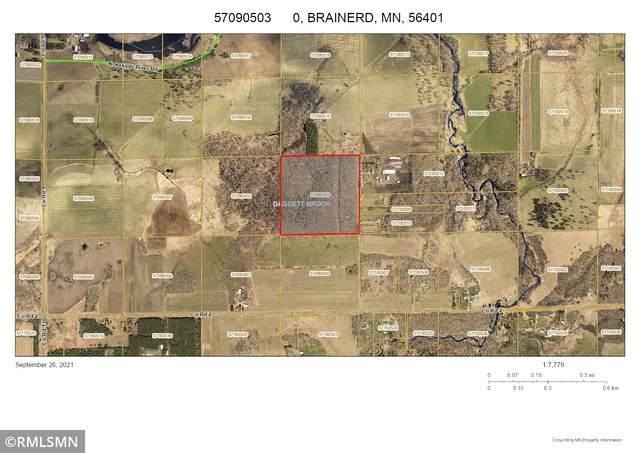 40 Acres Wheeler Road, Brainerd, MN 56401 (#6105717) :: The Pietig Properties Group