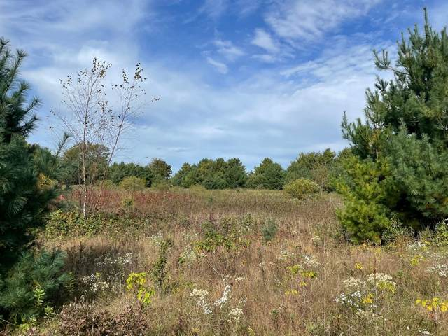 Lot 1 County Road D, Colfax, WI 54730 (#6106116) :: The Preferred Home Team