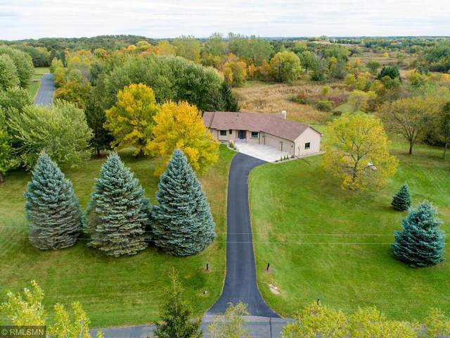 21645 France Boulevard, Lakeville, MN 55044 (#6106261) :: Reliance Realty Advisers