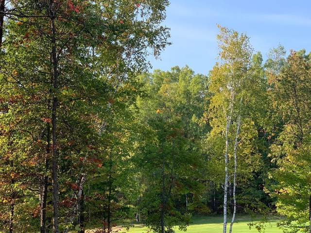 LOTS 21 & 22 Sparrow Drive, Breezy Point, MN 56472 (#6108623) :: The Pietig Properties Group