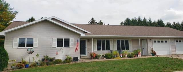 108 5th Avenue NW, Spring Grove, MN 55974 (#6109223) :: Servion Realty