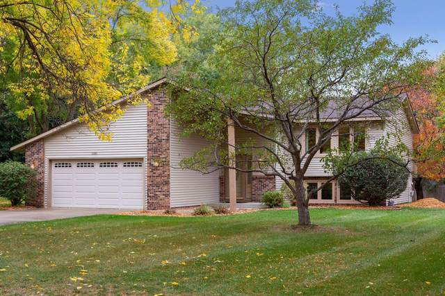 1381 105th Avenue NW, Coon Rapids, MN 55433 (#6109599) :: Holz Group