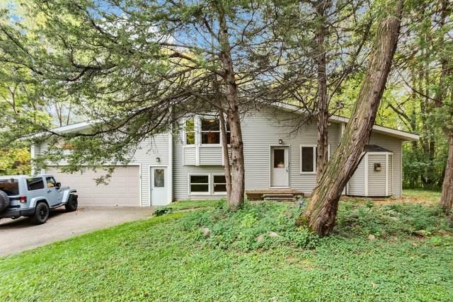 6039 Pinewood Lane, Minnetonka, MN 55345 (#6110112) :: Carol Nelson | Edina Realty