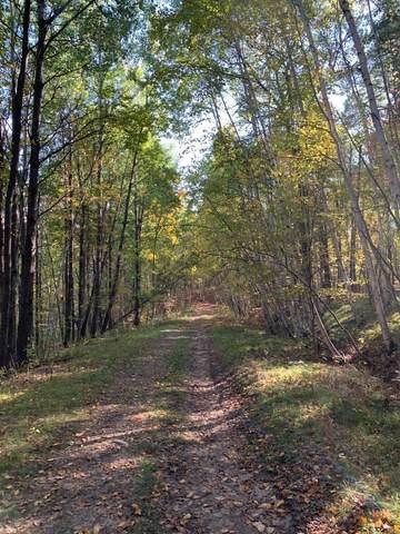 TBD Delaware Trail, Breezy Point, MN 56472 (#6110209) :: The Pietig Properties Group