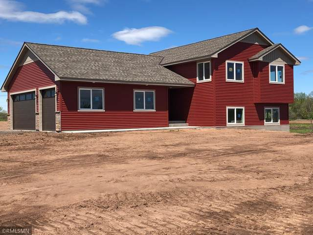 51844 Government Road, Rush City, MN 55069 (#6111127) :: Reliance Realty Advisers