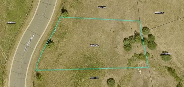 3189 Old Stone Way NE, Sauk Rapids, MN 56379 (#6111924) :: The Twin Cities Team