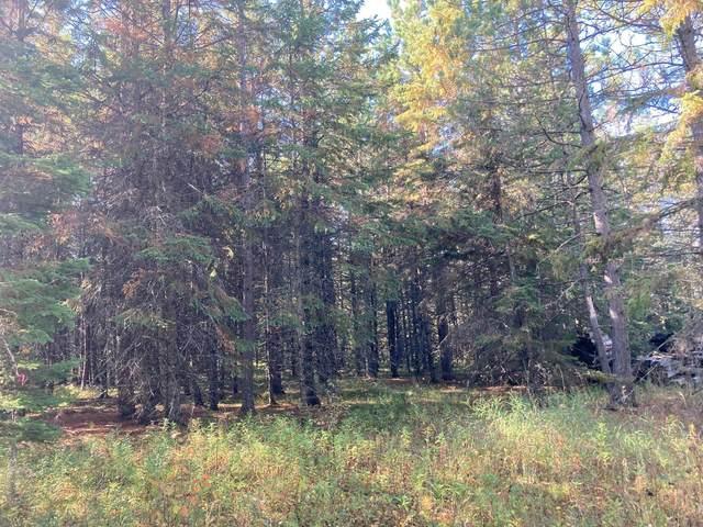 TBD Carpenter Road, Cook, MN 55723 (#6112629) :: Servion Realty
