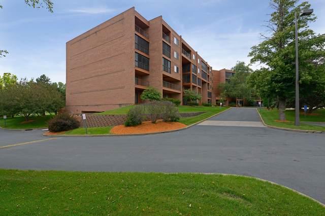 3300 Louisiana Avenue S #321, Saint Louis Park, MN 55426 (#6113676) :: Holz Group