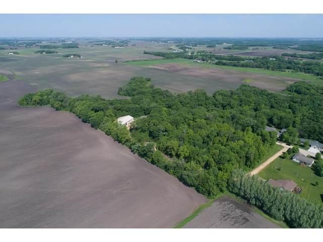 165 Woodland, Henderson, MN 56044 (#6114077) :: Carol Nelson | Edina Realty