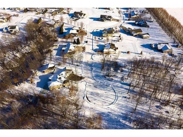 175 Woodland, Henderson, MN 56044 (#6114081) :: Carol Nelson | Edina Realty