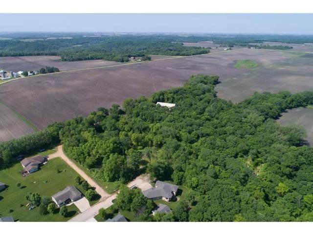 170 Woodland, Henderson, MN 56044 (#6114086) :: Carol Nelson | Edina Realty