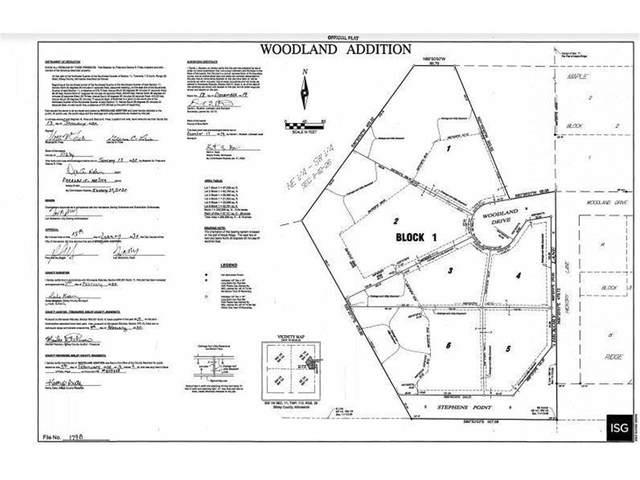 180 Woodland, Henderson, MN 56044 (#6114101) :: Carol Nelson | Edina Realty