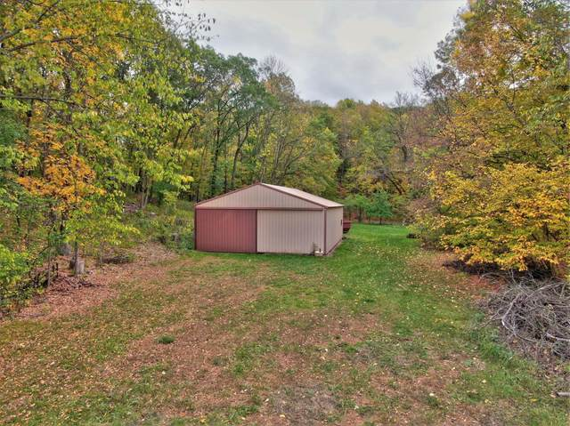 16879 45th Street NW, Annandale, MN 55302 (#6114396) :: Servion Realty