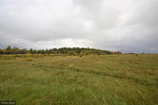 1778 County Road 17 SW, Pequot Lakes, MN 56472 (#6114541) :: The Pietig Properties Group