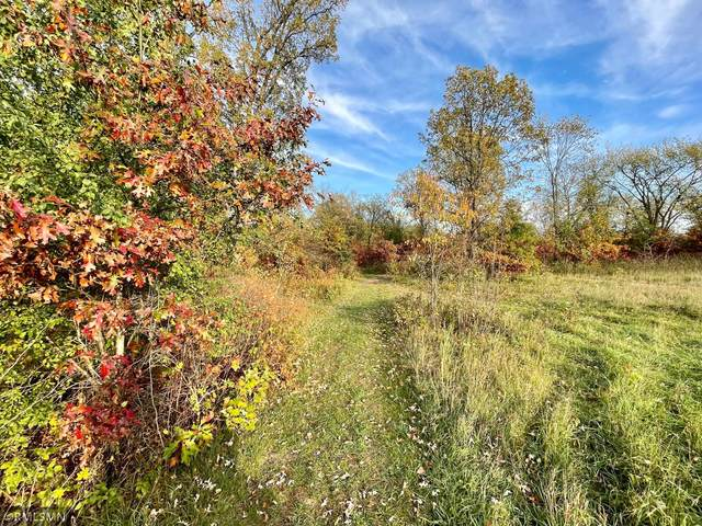 XXXX 151st St Nw, Blue Hill Twp, MN 55398 (#6114618) :: Servion Realty