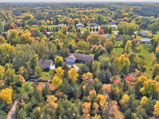 8877 79th Street NW, Annandale, MN 55302 (#6115498) :: Servion Realty