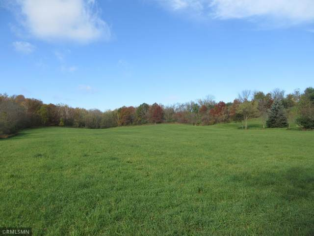 XXX 180th Street, Luck, WI 54853 (#6115556) :: Servion Realty