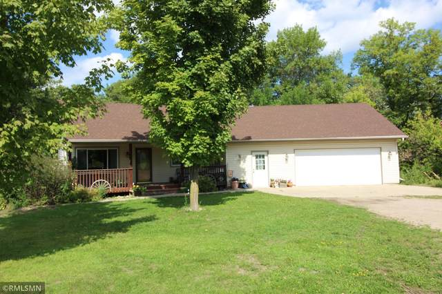 6667 150th Street NW, Clearwater, MN 55320 (#6115591) :: Servion Realty