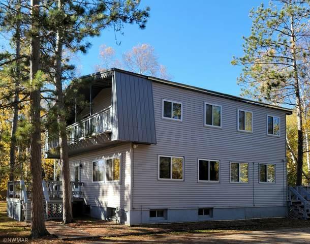 249 Lakewood Drive NW, Bemidji, MN 56601 (#6115710) :: Twin Cities Elite Real Estate Group   TheMLSonline