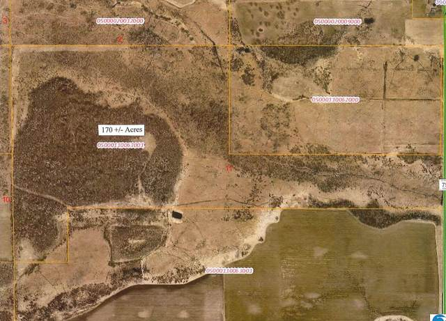 38xxx Co Rd 75, Wadena, MN 56482 (#6115723) :: Lakes Country Realty LLC