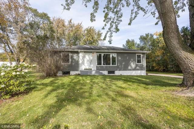 21880 141st Avenue N, Rogers, MN 55374 (#6115883) :: The Preferred Home Team