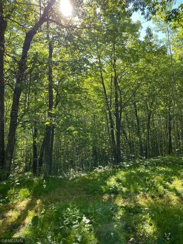 xx State Hwy 23, Wrenshall Twp, MN 55797 (#6116877) :: Lakes Country Realty LLC