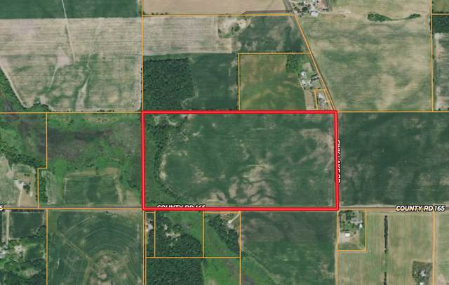 xxx County Road 165, Luxemburg Twp, MN 55389 (#6117015) :: Bos Realty Group
