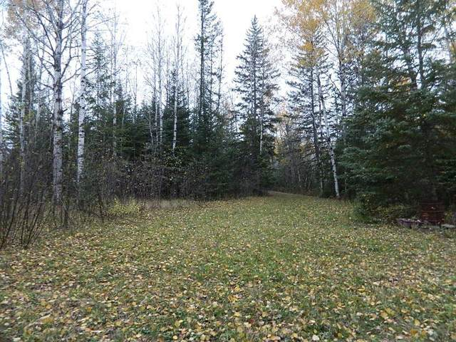 TBD Highway 71, Littlefork, MN 56653 (#6117029) :: Lakes Country Realty LLC