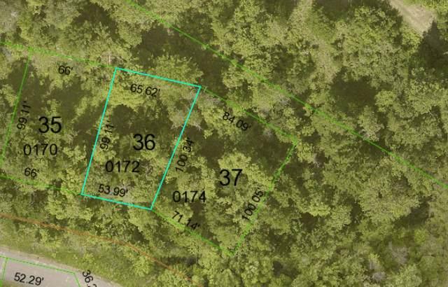 Lot 36 Waters Edge Drive NW, Walker, MN 56484 (#6117405) :: Servion Realty