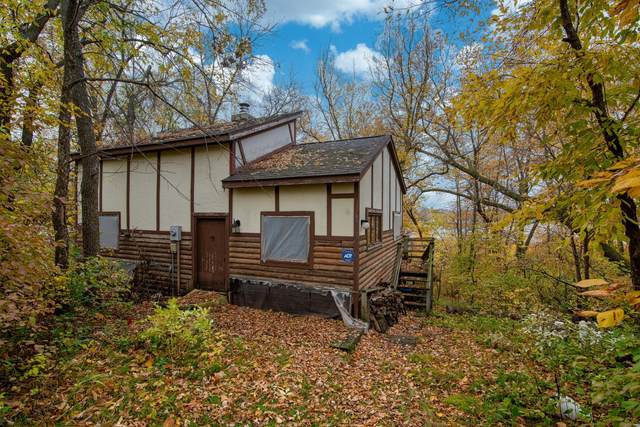 10982 Angler Drive, Grey Eagle, MN 56336 (#6119204) :: The Twin Cities Team