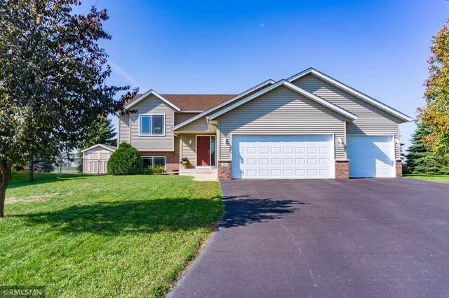 1161 Farmers Lane, Belle Plaine, MN 56011 (#6119856) :: The Twin Cities Team