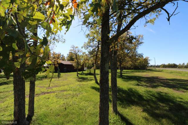 10433 Peace Lane NW, Bemidji, MN 56601 (#6120380) :: Helgeson Platzke Real Estate Group