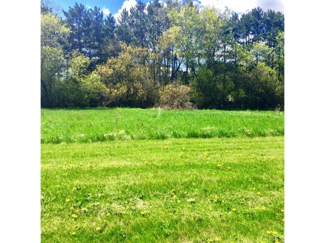 Lot 1 Amber View St, Menomonie, WI 54751 (#4545221) :: Olsen Real Estate Group
