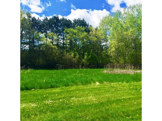 Lot 2 Amber View St, Menomonie, WI 54751 (#4545224) :: Olsen Real Estate Group