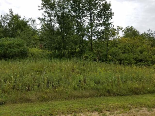 Lot 16 776th Avenue, Spring Valley, WI 54767 (#4694913) :: The Preferred Home Team