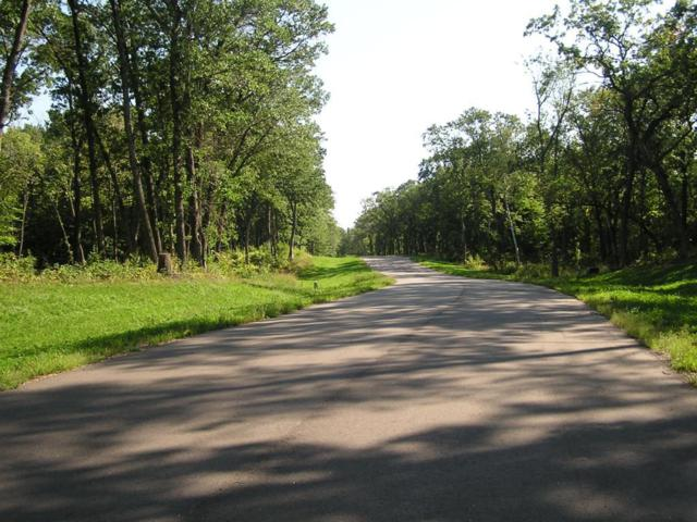 Lot 2/2 Xerus Street NW, Zimmerman, MN 55398 (#4713246) :: The Sarenpa Team