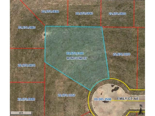911 Emily Court NE, Montgomery, MN 56069 (#4760140) :: House Hunters Minnesota- Keller Williams Classic Realty NW