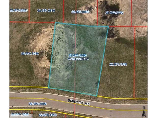 905 Emily Court NE, Montgomery, MN 56069 (#4760144) :: House Hunters Minnesota- Keller Williams Classic Realty NW
