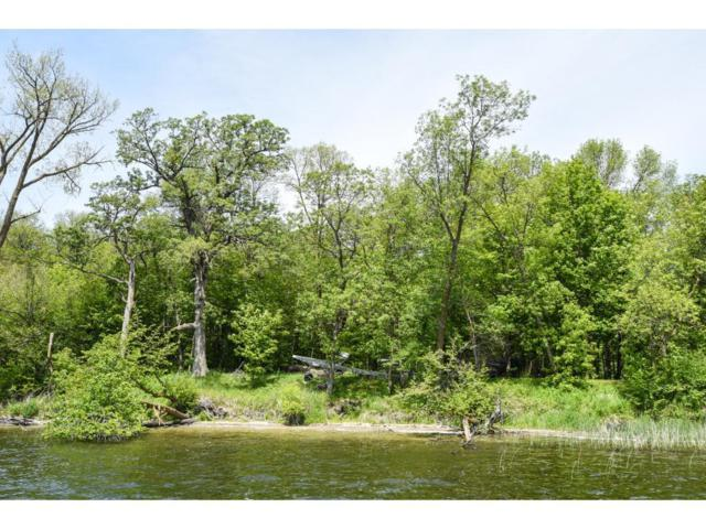 LOT 1 BLK 1 Woodhaven, Candor Twp, MN 56587 (#4774497) :: The Preferred Home Team
