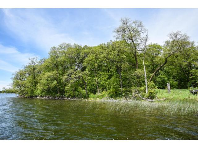 LOT 2 BLK 1 Woodhaven, Candor Twp, MN 56587 (#4774513) :: The Preferred Home Team