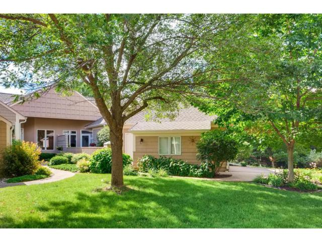 2994 Pelican Point Circle, Mound, MN 55364 (#4847630) :: The Preferred Home Team