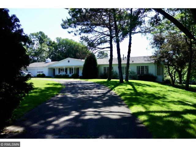 460 Peavey Road, Wayzata, MN 55391 (#4851886) :: The Preferred Home Team