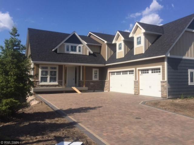 155 Wooddale Avenue, Wayzata, MN 55391 (#4854175) :: House Hunters Minnesota- Keller Williams Classic Realty NW