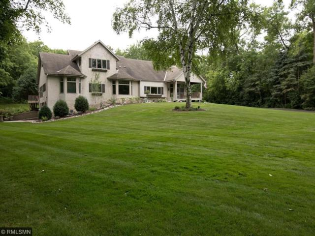 22695 Murray Street, Shorewood, MN 55331 (#4854662) :: Norse Realty