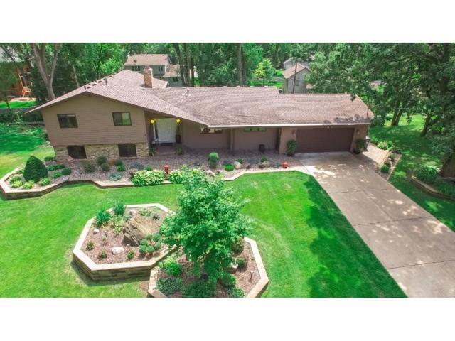 10110 Oak Shore Drive, Lakeville, MN 55044 (#4856636) :: The Preferred Home Team
