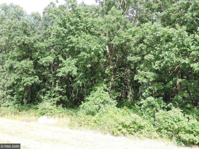 Lot33, Blk 2 82nd St Avenue SE, Becker, MN 55308 (#4872250) :: The Preferred Home Team
