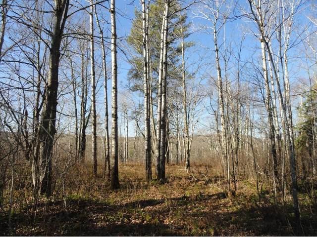 6199 Voyageurs Trail, Biwabik, MN 55708 (#4872396) :: Holz Group