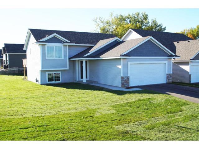 6751 21st Avenue S, Lino Lakes, MN 55038 (#4873381) :: The Preferred Home Team