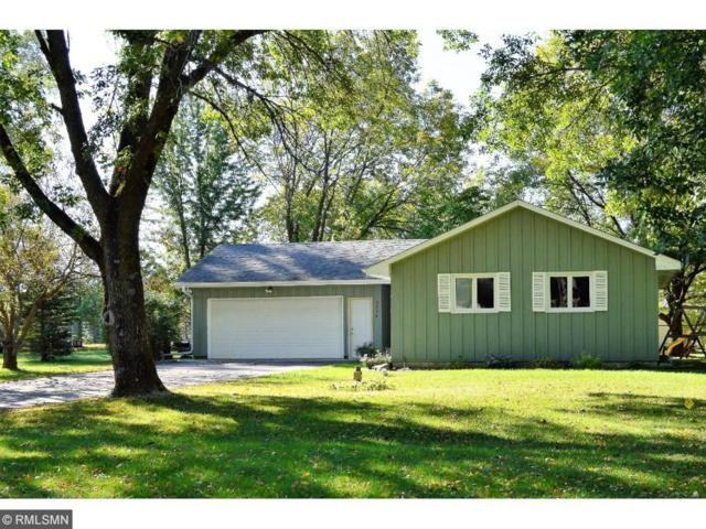 3754 174th Avenue NW, Andover, MN 55304 (#4876958) :: Team Firnstahl
